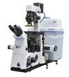Singapore Analytical Technologies Pte Ltd Application Bio / Life Science Microscopy